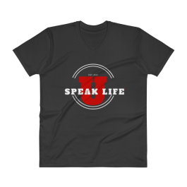 Speak Life Uniniversity V-Neck T